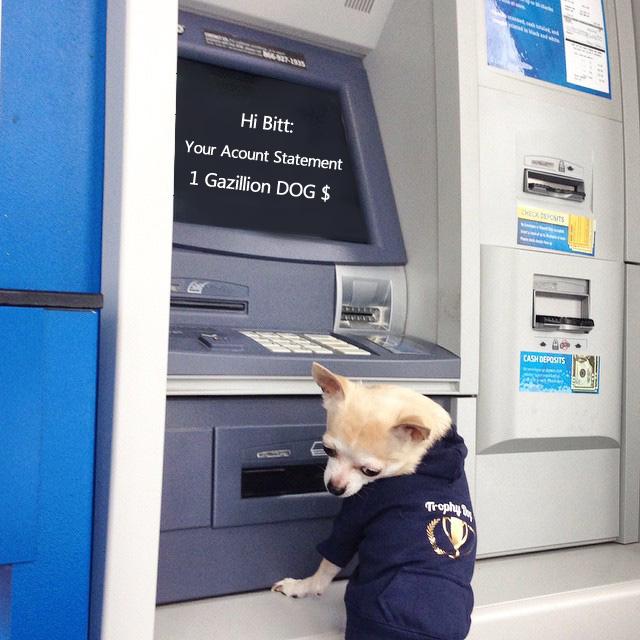 bitt-bank