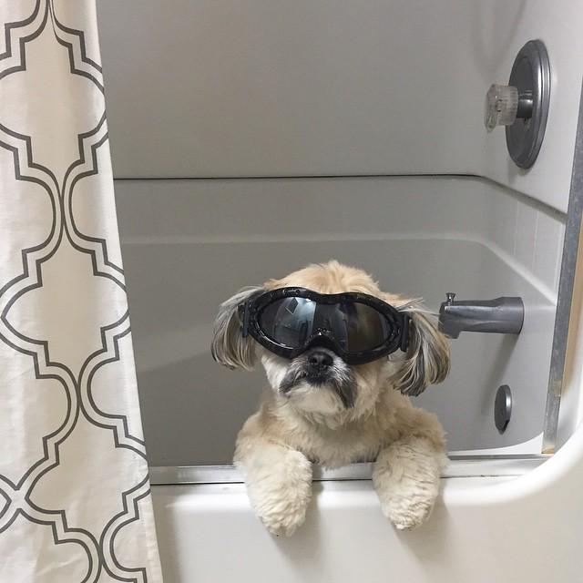 max-bath